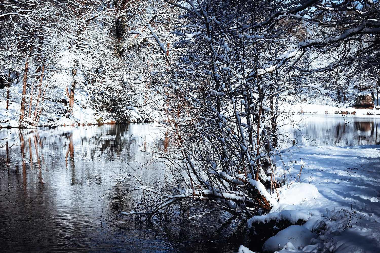 SAINT TRIMOEL sous la neige img-1921